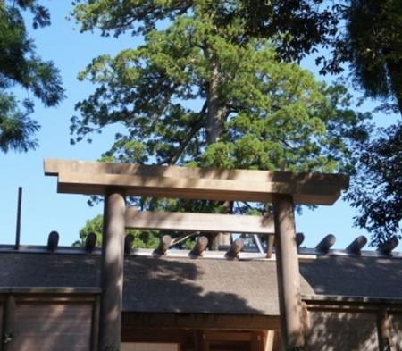 伊勢神宮はパワースポットではありません 参拝したら何をする?