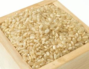 玄米と白米の違い!値段や栄養はどう違う?