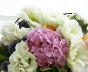 結婚式にあじさいを装花に使っても大丈夫?花言葉は?