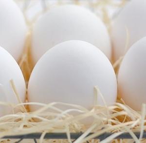 冷凍卵の作り方と解凍方法!賞味期限や手軽で美味しい食べ方は?