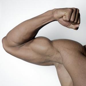 筋トレには必須!タンパク質を多く含む食品と過剰摂取の危険性は?