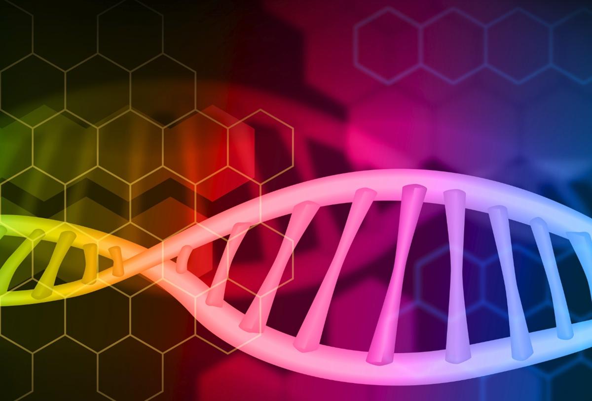 遺伝子とDNAと染色体の違いをわかりやすく説明!ゲノムも解説